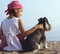 My Top Three Summer Pet Getaways