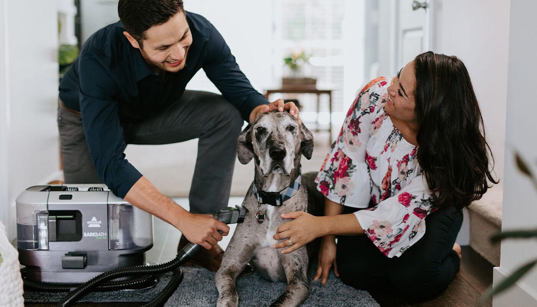 Pet Supplies Grooming Clean