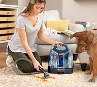 What Carpet Cleaning Formula can I Use That's Safe around My Dog?