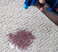 Carpet-Saving Stain Removal Tips