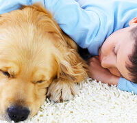 5 Life Lessons Kids Can Learn from Pets