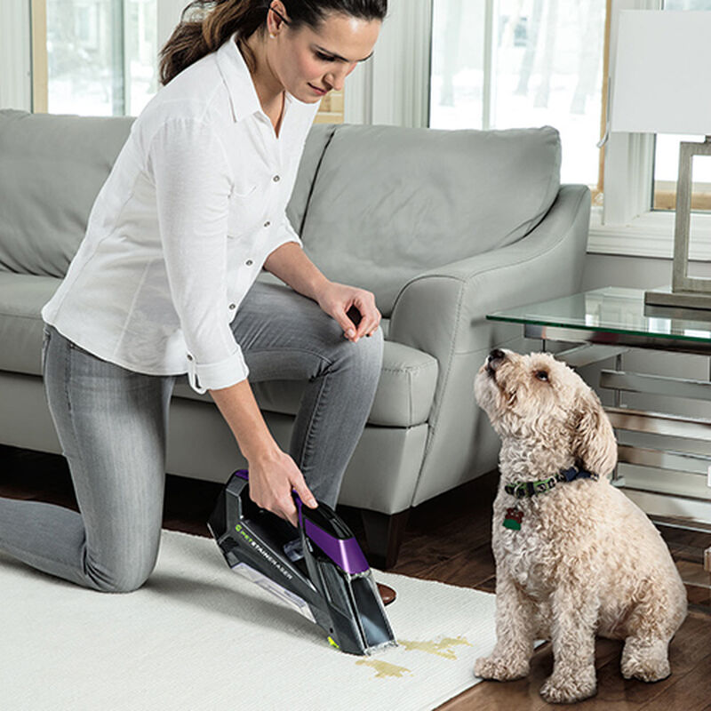 Pet Stain Eraser 2054 BISSELL Portable Carpet Cleaners Dog Stain