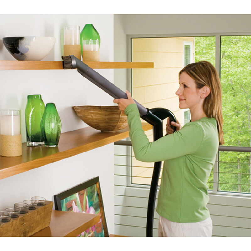 Big Green Complete Carpet Cleaner Wand Cleaning