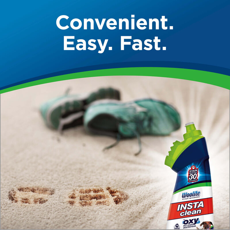 Woolite Instaclean Pet Stain Remover Fast and Easy