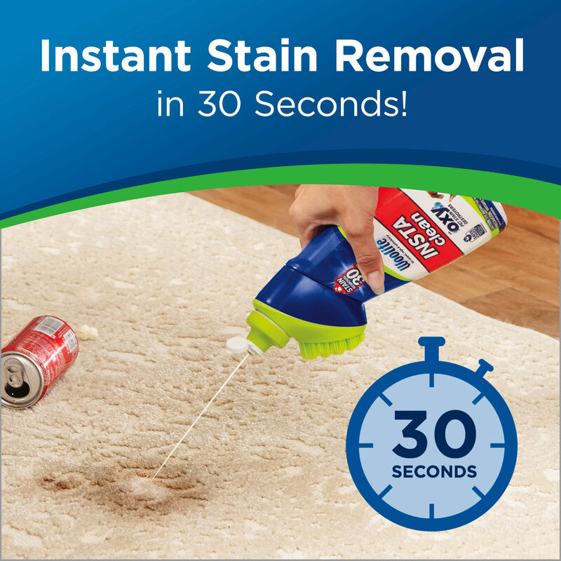 Woolite Instaclean Pet Stain Remover Instant Stain Removal