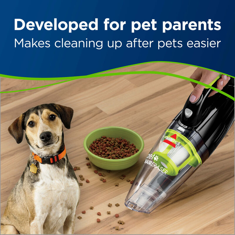 Pet Hair Eraser Handvac Pet Messes