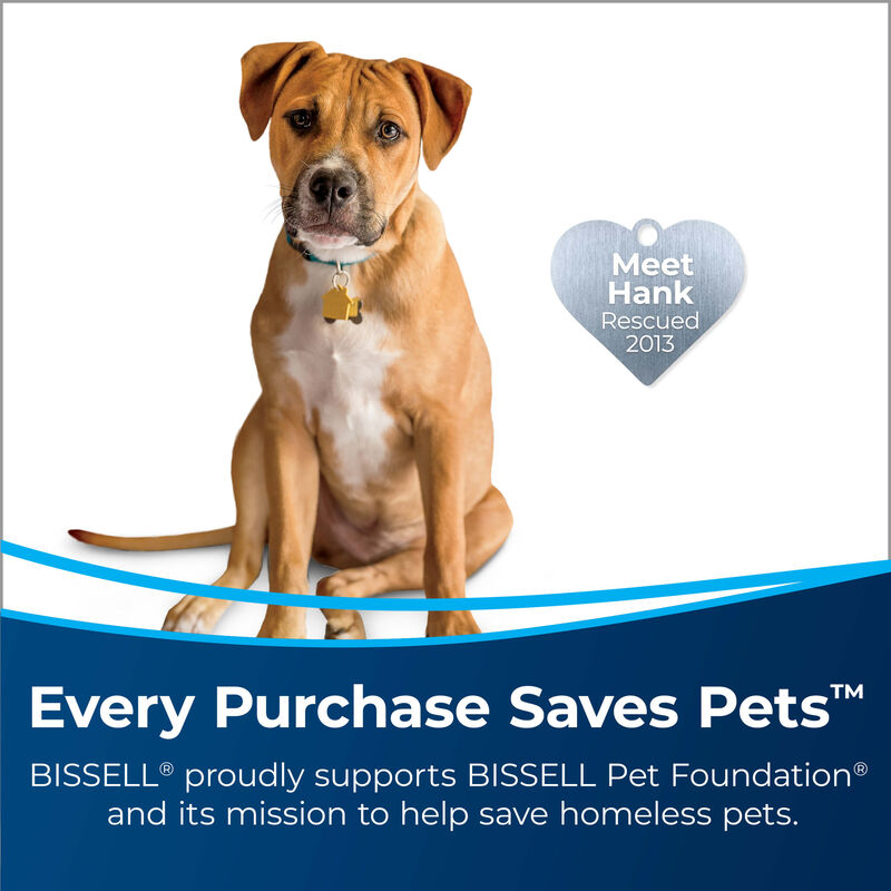 BISSELL ProHeat 2X® Lift-Off® Pet Upright Carpet Cleaner 15651 Save Pets