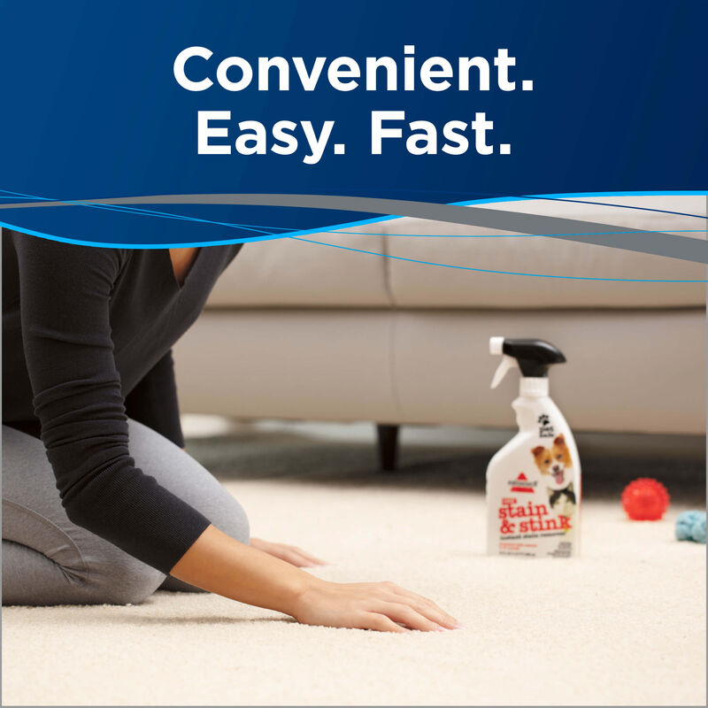Stain & Stink Instant Stain Remover Fast and Easy