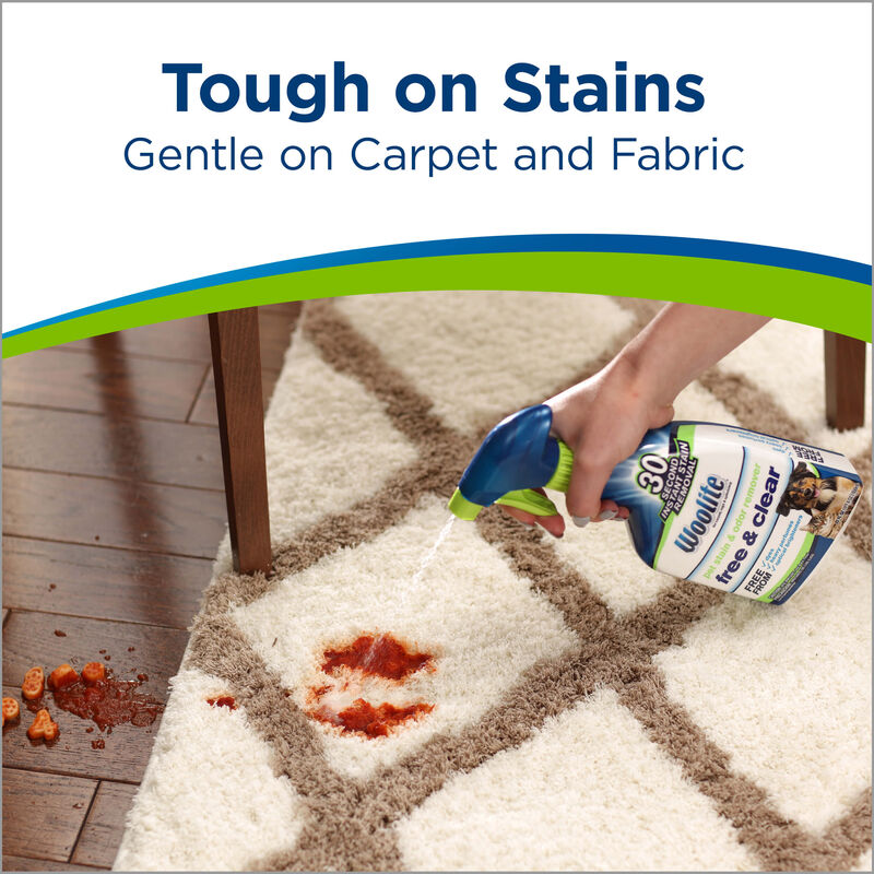 Woolite® Free & Clear Pet Stain & Odor Remover Pretreat Tough Stains