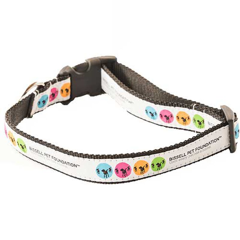 BISSELL Pet Foundation Small Dog Cat Collar 19526 AdoptBox