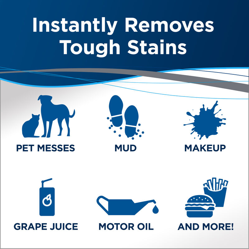 Stain & Stink Instant Stain Remover Tough Stains