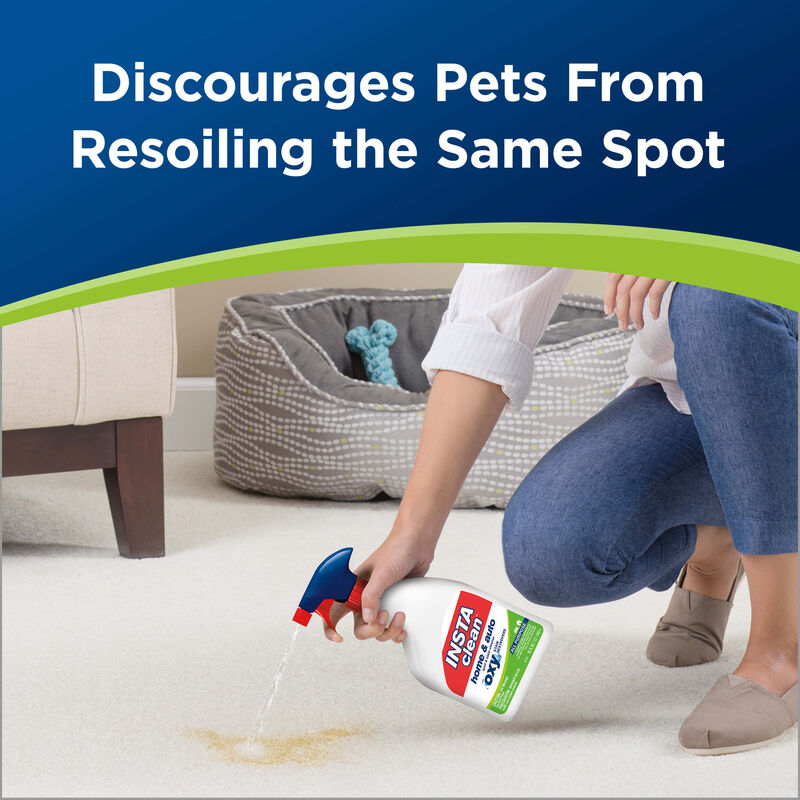InstaClean™ Home & Auto Pre-treat Stain & Odor Remover Pet Cleaning