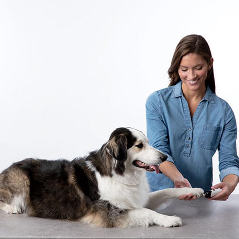 Pet Nail Grinder 26891 BISSELL Pet Grooming large dog