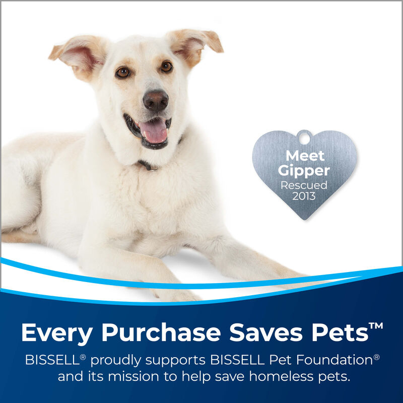BISSELL Tough Stain Pretreat for Carpet & Upholstery 4001 Save Pets