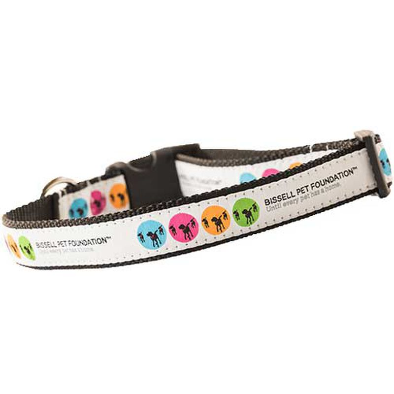 BISSELL Pet Foundation Small Dog Cat Collar 195261 AdoptBox