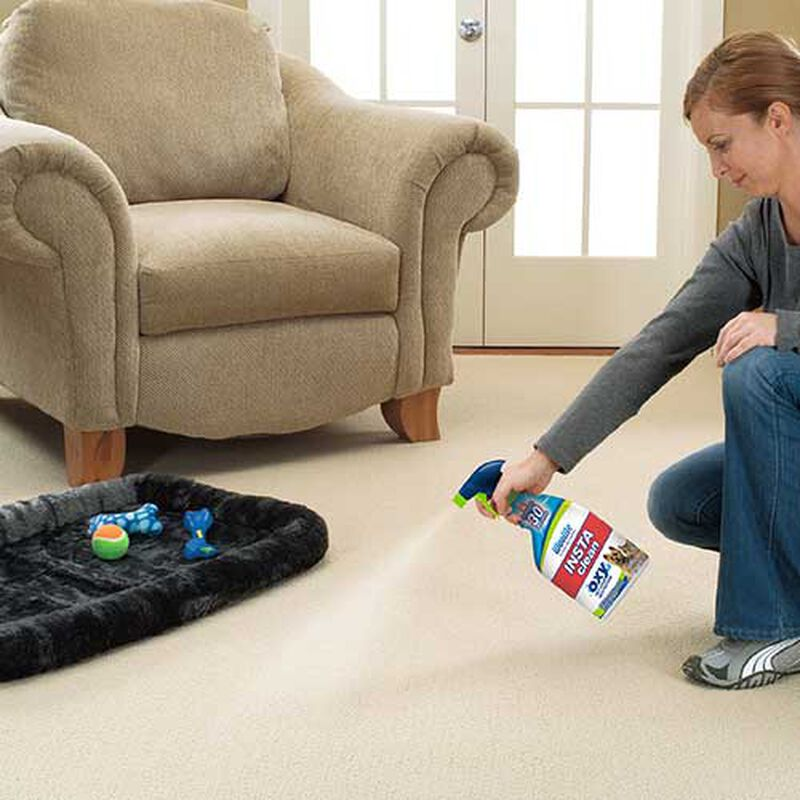 Woolite Instaclean 1684 Carpet Cleaning