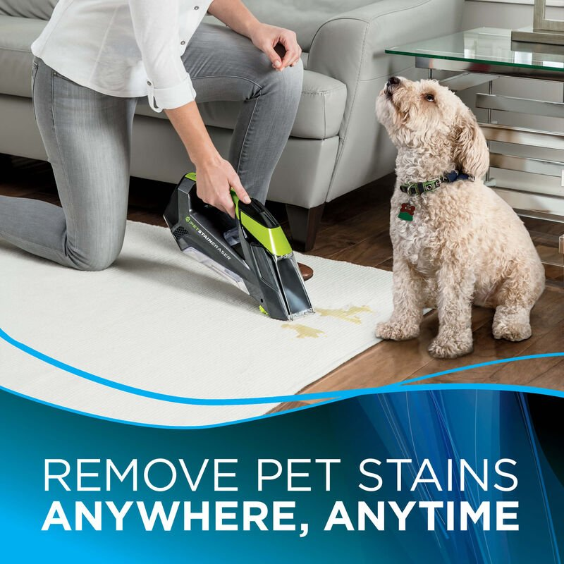 Pet Stain Eraser Dog is Seeing Woman Text: Remove pet stains Anywhere, Anytime