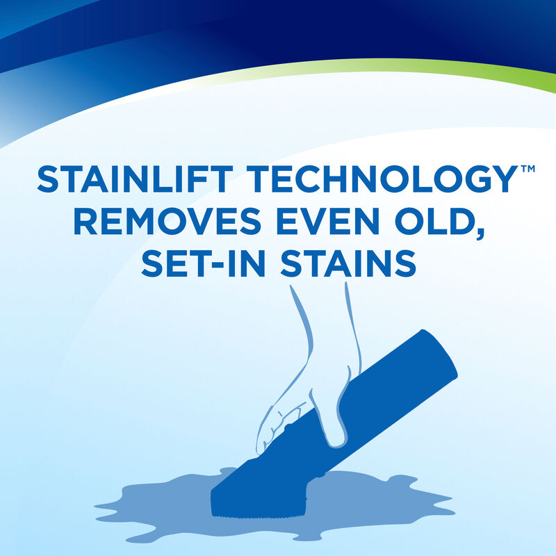Woolite® Carpet & Upholstery Foam Cleaner Stainlift Technology