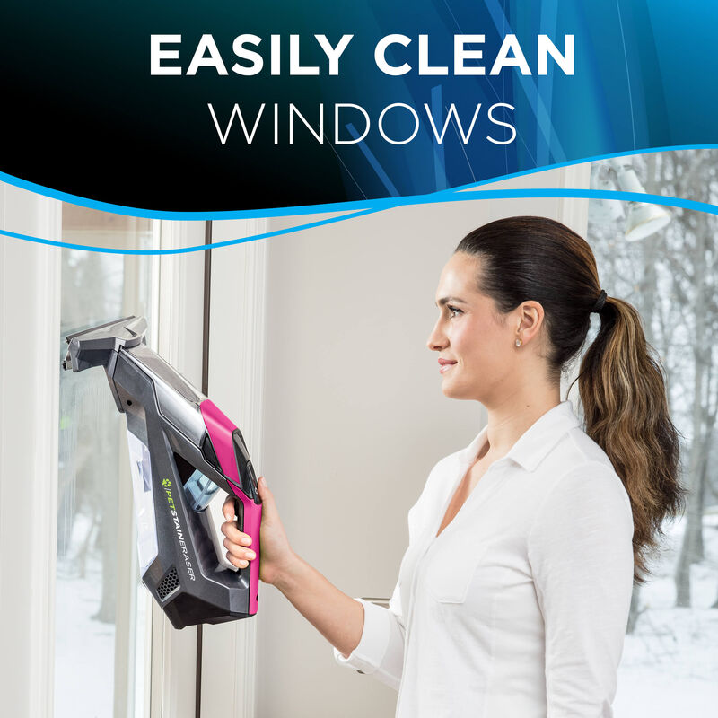 Pet Stain Eraser Window Cleaning