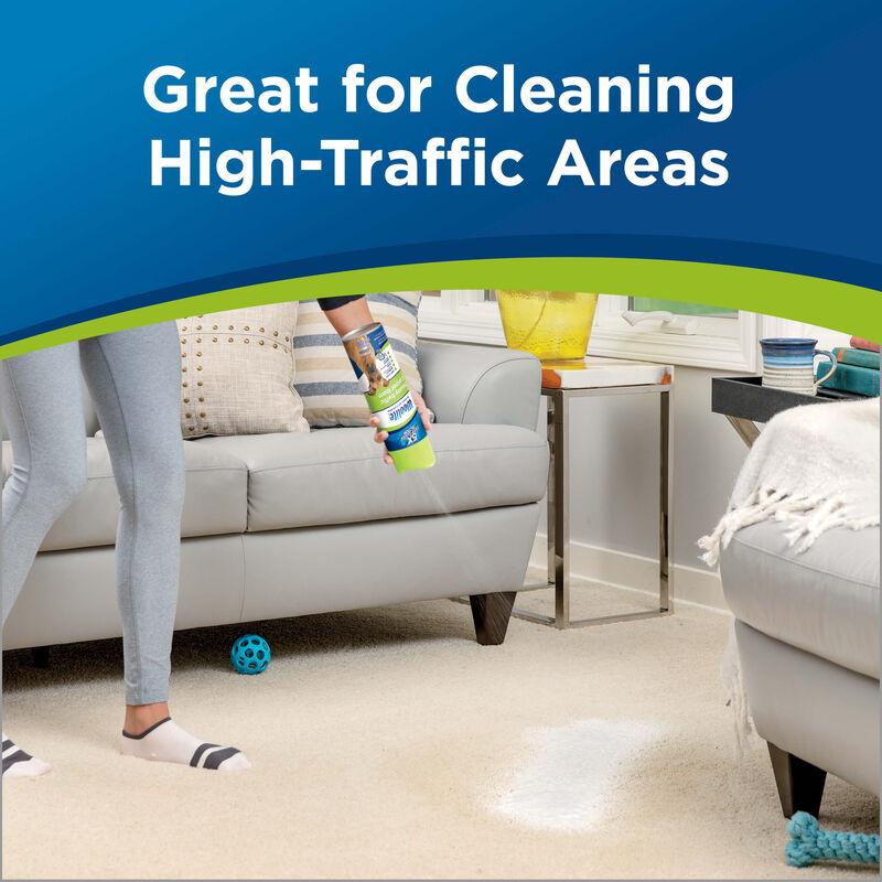 Woolite Heavy Traffic Foam Carpet Cleaner 0820 High Traffic Areas