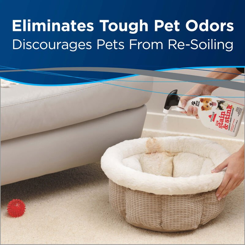 Stain & Stink Instant Stain Remover Removes Tough Pet Odors