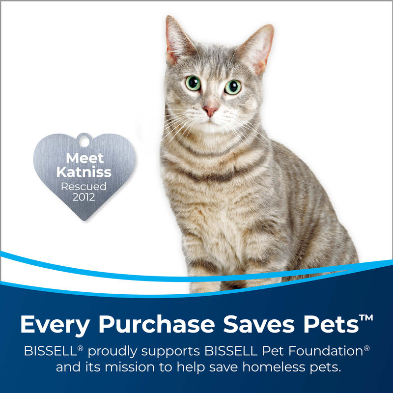 BISSELL Pet Stain & Odor + Antibacterial Formula 1567 Save Pets
