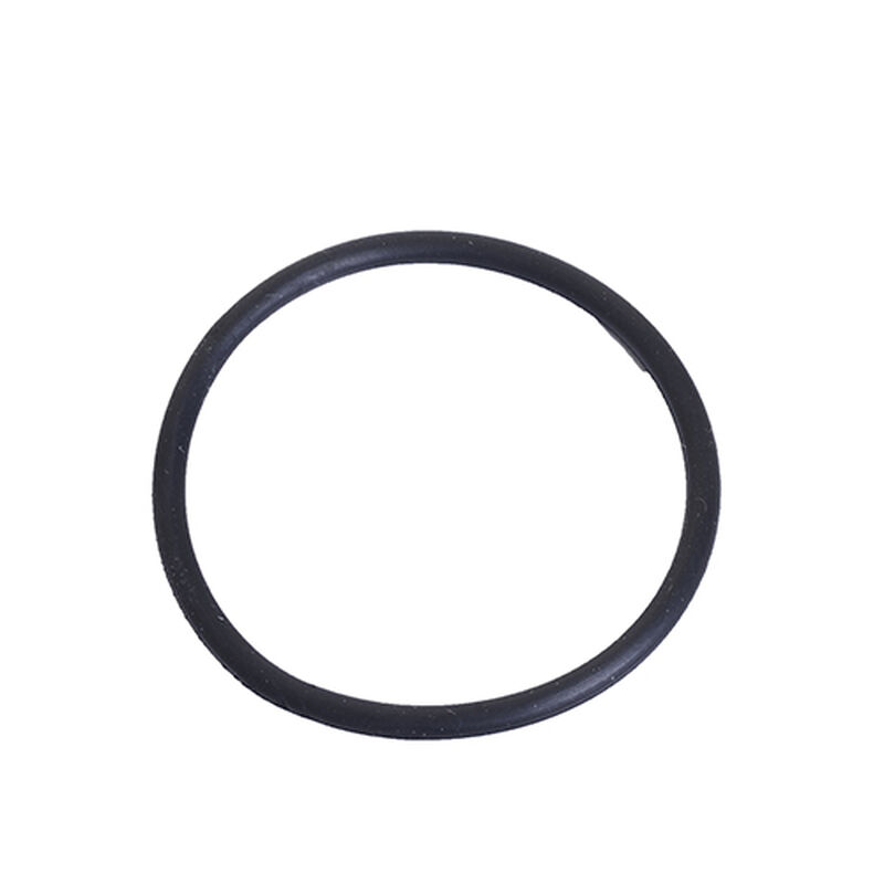 Clean Tank Oring ProHeat 2X Revolution 1606411 BISSELL Carpet Cleaner Parts