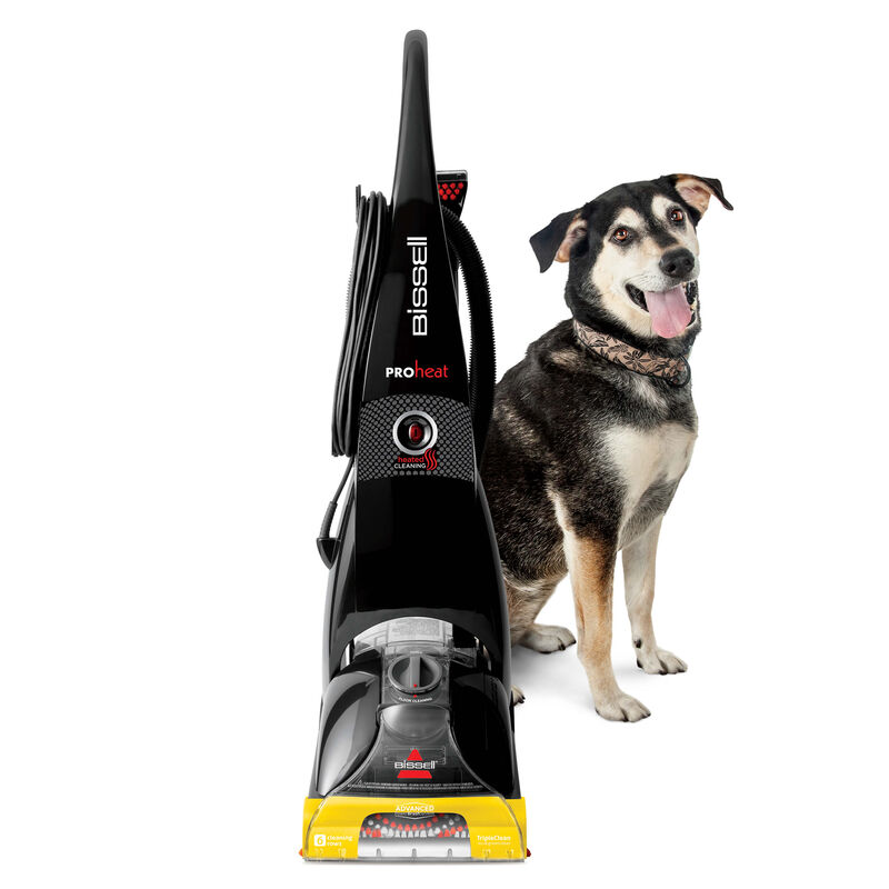 ProHeat Front View With Dog
