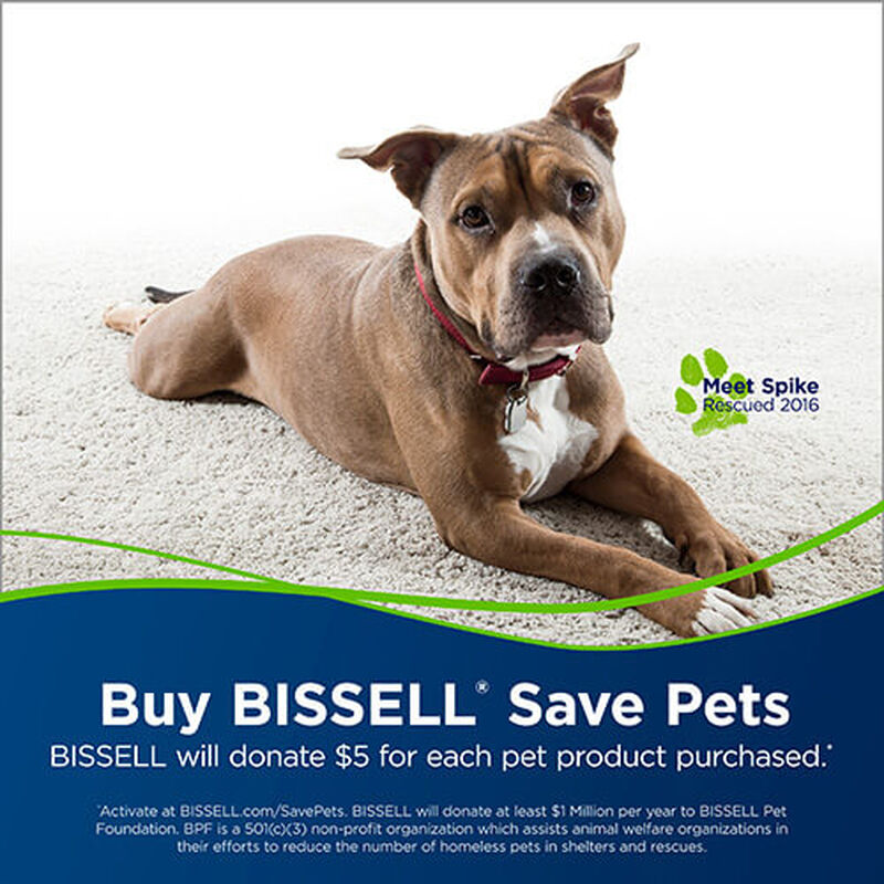 Powerlifter_Swivel_Pet_2260_BISSELL_Vacuum_Cleaners_Carpet_SavePets
