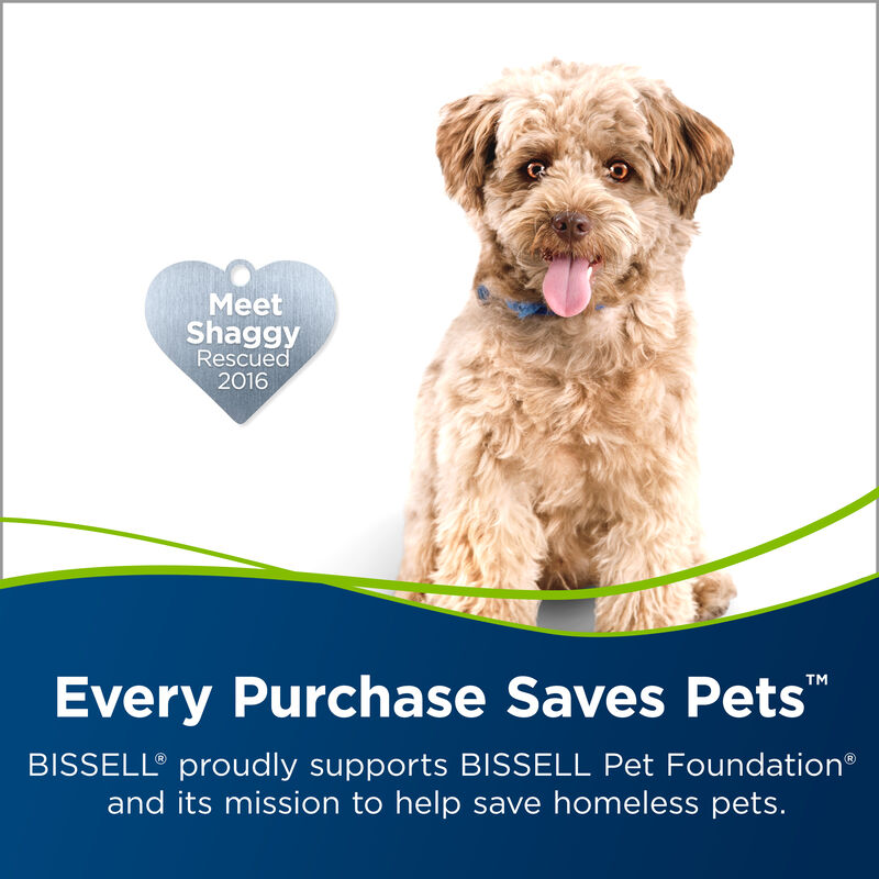 BISSELL TurboClean PowerBrush Pet Carpet Cleaner 2085 Save Pets