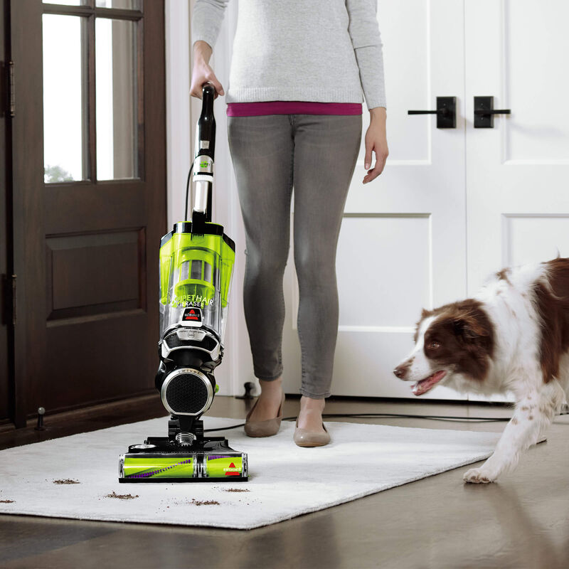 BISSELL® Pet Hair Eraser® 1650A Vacuuming Pet Messes